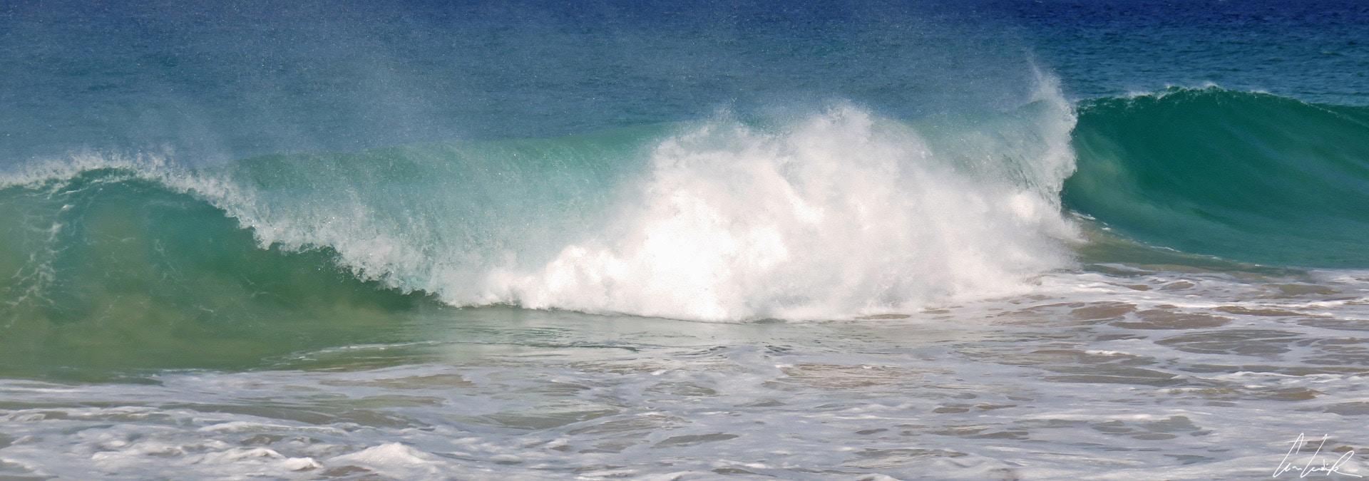 Maio - watch the sea