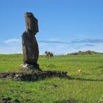 Sur l'île de Pâques, l'Ahu Tahai présente un seul grand moai intact mais à l'aspect bien érodé. Il porte le nom de l'ensemble du complexe