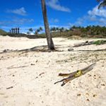 Le village d'Anakena au nord-est de l'île de Pâques, est seul endroit de l'île avec une plage où les bateaux peuvent facilement accoster