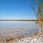Les eaux bleues de la Laguna Cejar contiennent une très grande proportion de cristaux de sels, lui conférant un fort niveau de flottaison