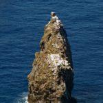 A la pointe Sud-Ouest de l'île de Pâques, bien visible depuis Orongo, émergeant de l'océan tel un pic acéré, l'ilôt Motu Kau Kau est inaccessible
