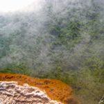 El -Tatio - Les eaux chaudes permettent le développement de petites algues et de bactéries qui se colorent en fonction des oxydes sécrétés.