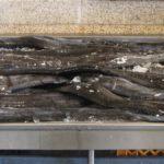 Madère, marché des Laboureurs - L'espada ou sabre noir est un poisson des profondeurs filiforme à la peau noire et lisse avec des dents acérées