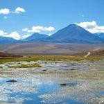 L'Altiplano chilien - Une longue route serpente au milieu d'un paysage épuré à plus de 4000 mètres d'altitude
