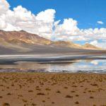 Altiplano chilien - Au sein du Salar de Aguas Calientes se trouvent des coins isolés possédant de l'eau saline et de la végétation sauvage