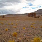Altiplano chilien – Des colonnes de pierre faisant penser à des gardiens se dressent fièrement dans ce paysage désertique: on les appelle « Monjes »