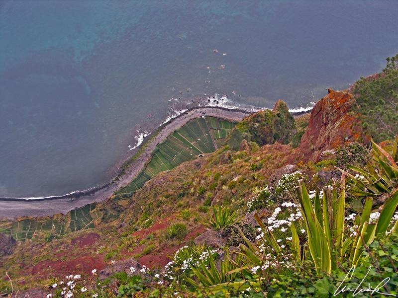 Madère - Les cultures en terrasse de Fajas de Cabo Girão, un ensemble de parcelles perchées sous la falaise, offrent un étonnant contraste de couleurs