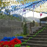 Madère - La ville de Funchal foisonne de belles décorations telles que des guirlandes de papier, des tapis de fleurs et des « Charolas »