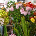 Madère - Les étals de fleurs exotiques et multicolores du le marché des Laboureurs à Funchal