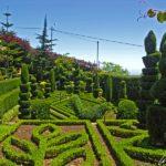 Le Jardin Botanique de Madère situé sur les hauteurs à une altitude d'environ 300 mètres, offre une vue imprenable sur l'océan et la baie de Funchal