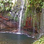 Madère, levada des 25 sources - un cirque rocheux avec une paroi verticale associant fougères et hépatiques sur laquelle ruissèlent les 25 sources.