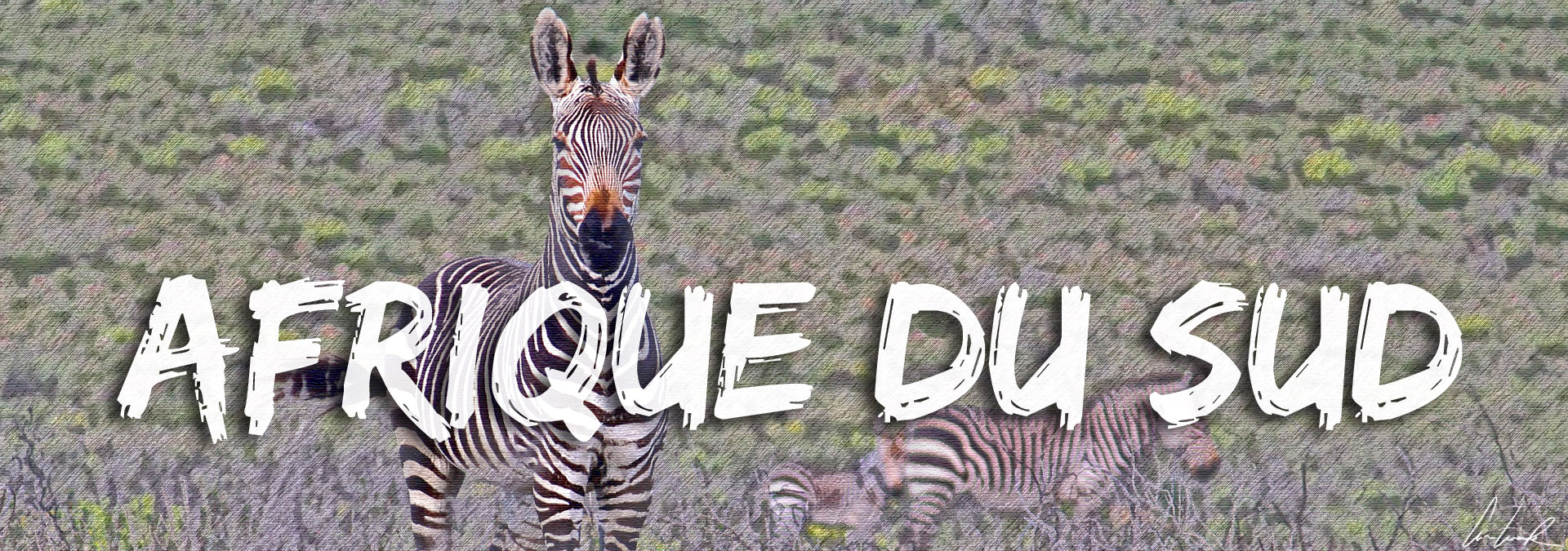 C-Ludik - Pays visité : Afrique du Sud