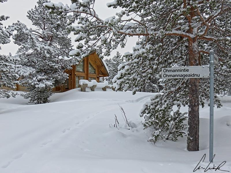 La Laponie en hiver, c'est le paradis blanc. De jolis paysages enneigés de forêts de pins où se blottissent des chalets en bois.