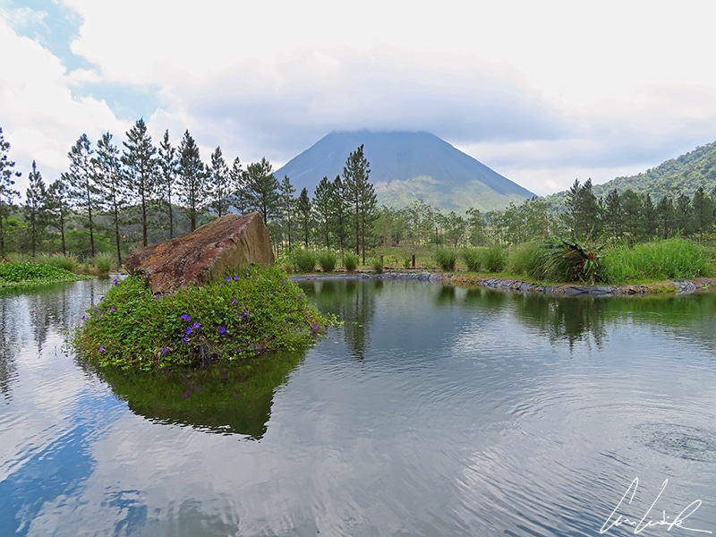 Le volcan Arenal, visible au loin, a très fréquemment la tête dans les nuages. Son reflet dans l'eau avec les nuages qui l'entourent n'en est que plus magique !