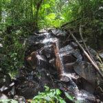 De nombreuses cascades se cachent au milieu de la végétation luxuriante (palmiers, fougères et mousses) qui prospère tout autour du volcan Arenal.