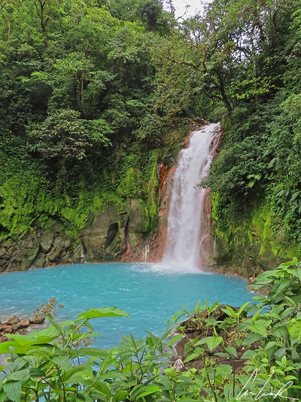 The beautiful Rio Celest waterfall plunges 98 feet into a pool of bright blue water surrounded by dense tropical forest.